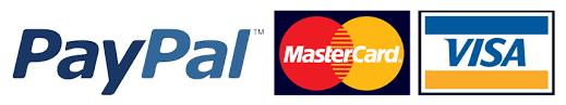 visa master card paypal logo.png